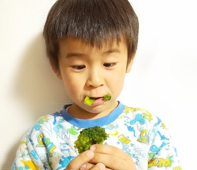 こんな時期だからこそ!子どももしっかり摂りたい【免疫力を高める栄養素ビタミンA・C・E】