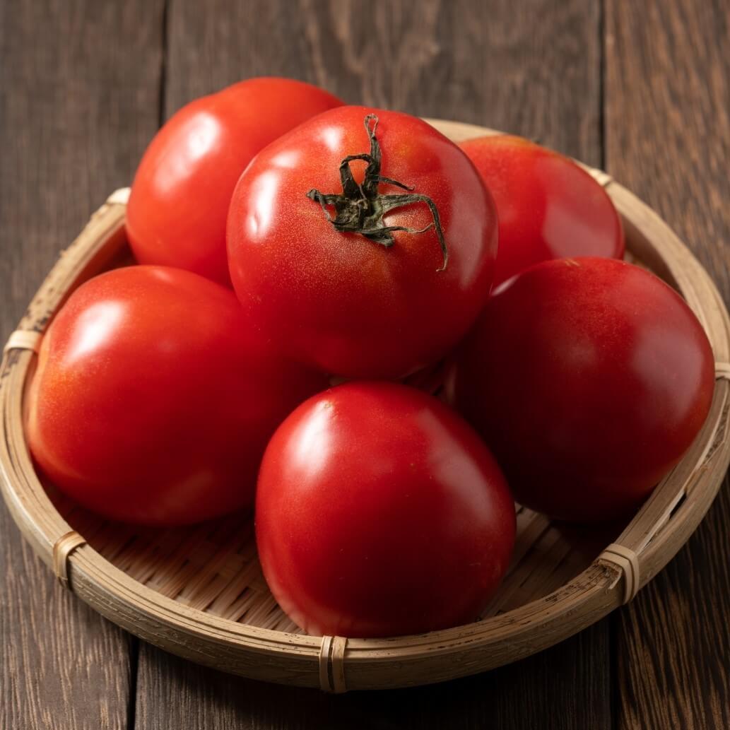 トマトをおいしく食べられる子ども大好きレシピ【管理栄養士おすすめ】