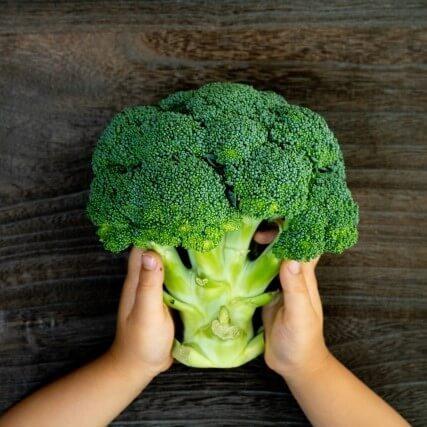"""子どもが食べられる緑の野菜N0.1「ブロッコリー」。ちょっと待って!いつも""""野菜室""""で保存してませんか?"""