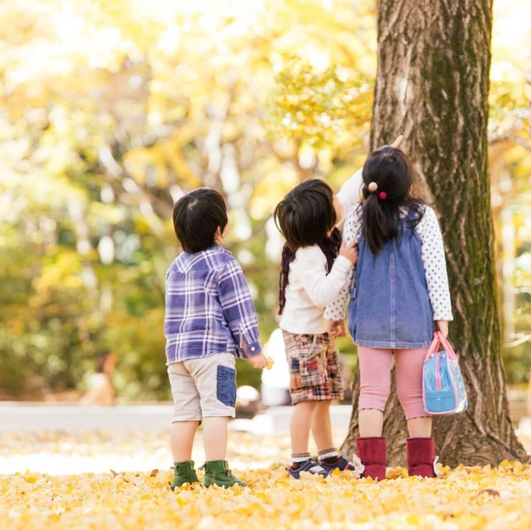 これからを生きる子どもに欠かせない「非認知能力」。どうすればわが子の力を伸ばせる?という問いにお答えします