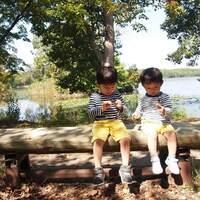 3~6歳。この時期の発達の大きな特徴は「子ども同士の関わり」