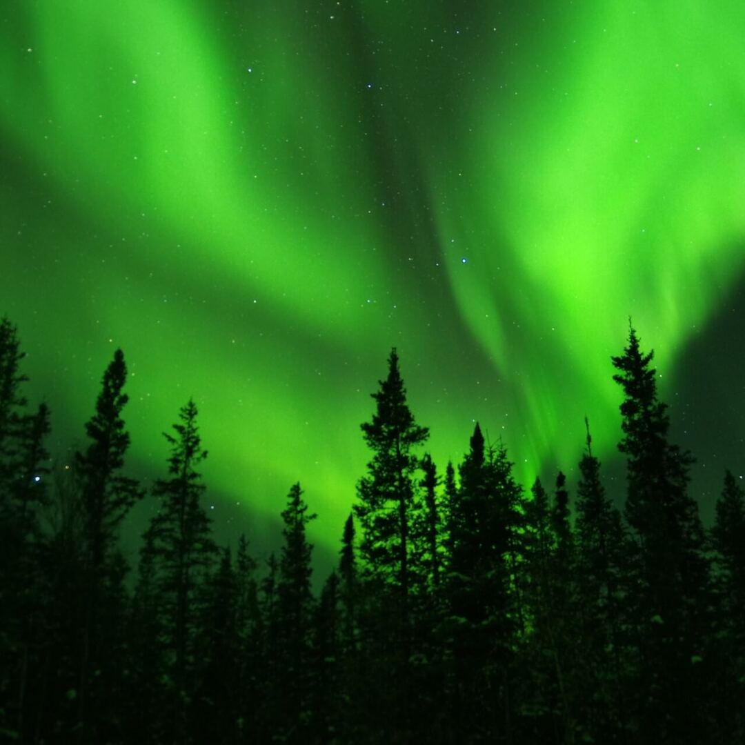 【巣ごもり年末年始の過ごし方】オーロラ、流氷、星座…冬ならではのとっておき風物詩をバーチャル体験!