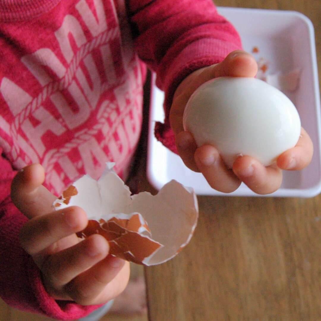 幼児期に大切な指先トレーニングにも!達成感たっぷりの「卵の殻をむく」お手伝いで卵サンドを作ろう