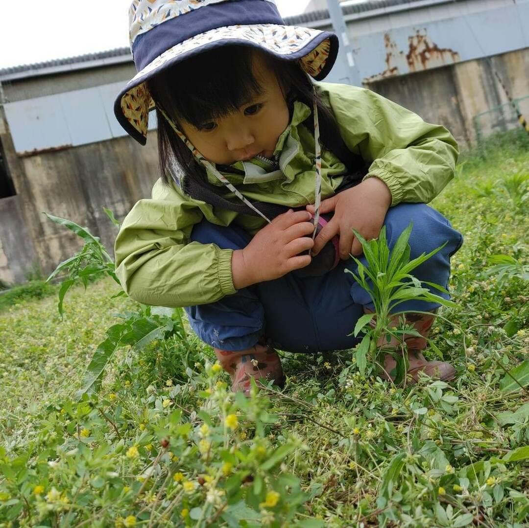 """なぜ虫に残酷なことを?子どもが経験でつかみとる""""いのちの感覚""""とそのときの""""大人の反応""""を大切に"""